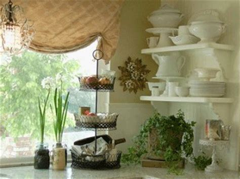 home decorating plants how to decorate kitchen with green indoor plants and save