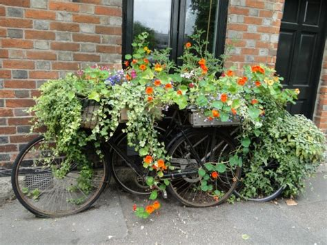 All About Gardening And Nature Container Gardening Ideas Container Garden Design