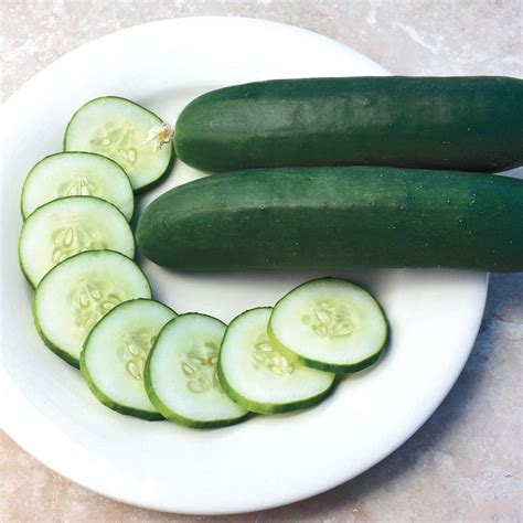 cucumber seeds slice more hybrid cucumber seeds from park seed