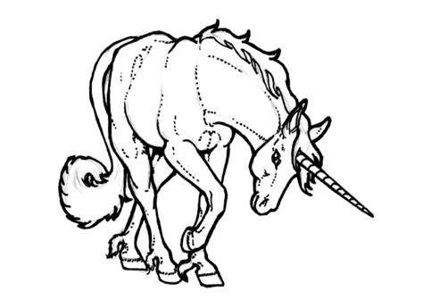 printable unicorn pictures to color free printable unicorn coloring pages for kids