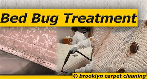 bed bug carpet cleaner brooklyn carpet cleaning most professional cleaning services brooklyn