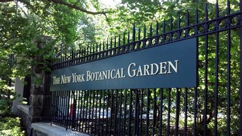 Beauty Beyond The Bronx Bombers Ny Botanical Garden Gift Shop