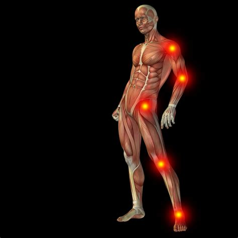 pain body chronic pain is a result of conversation by immune and