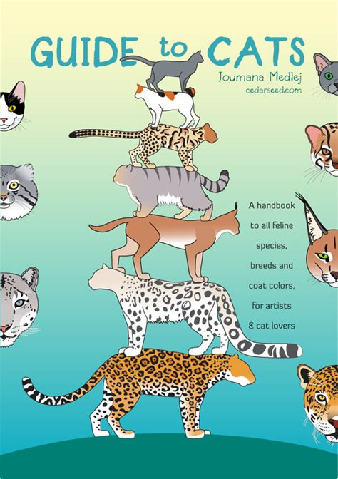 how to live like your cat books guides and poster tutorials by deviantart 187 bellissima