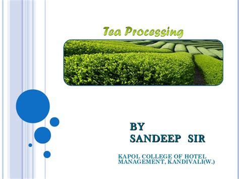 Process Of Tea Essay Mfawriting515 process of tea essay mfawriting515 web fc2