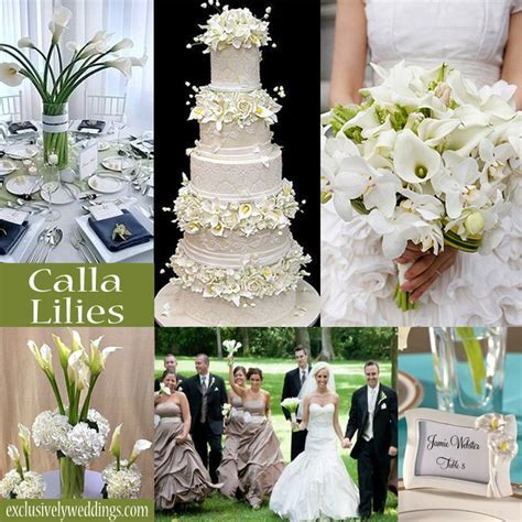 86 best Calla Lily Wedding Theme images on Pinterest