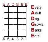 names of the guitar strings beginner guitar lessons