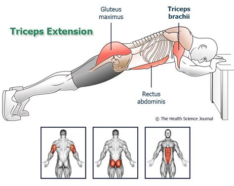 arm exercises without equipment 5 workouts for arm