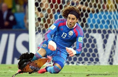 mexico memes world cup world sport memes guillermo ochoa soccer world cup brazil