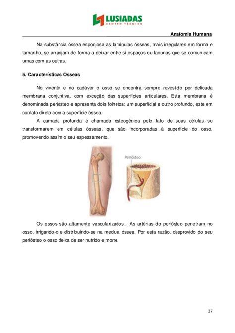 Fantástico Mcgraw Anatomía Colina Y Edición 12 De La Fisiología ...