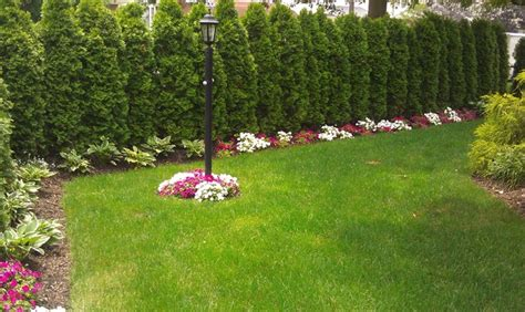 design house decor floral park ny floral park pool traditional landscape new york by