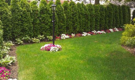 design house decor floral park floral park pool traditional landscape new york by