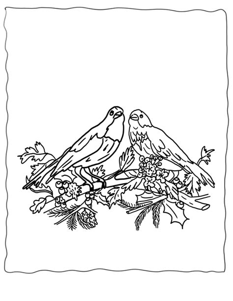 coloring pages of winter birds winter bird coloring pages download and print for free