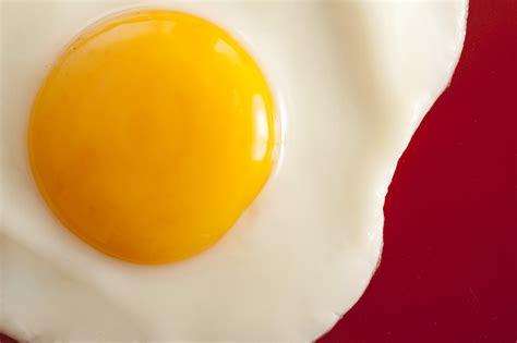 Yolk Egg yellow yolk 8129 stockarch free stock photos