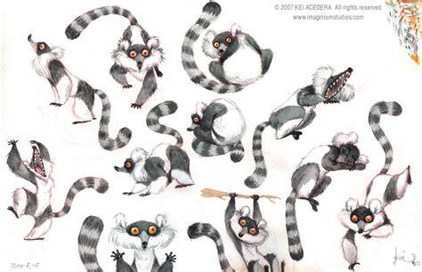 sketchbook of a zoo lemur gouache studies by imaginism on deviantart