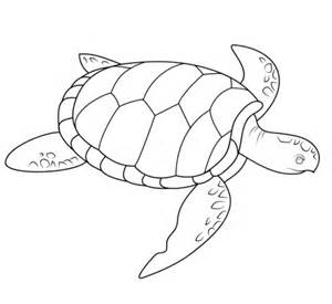 Sea Turtle Swimming Outline by Coloriage Tortue De Mer Coloriages 224 Imprimer Gratuits