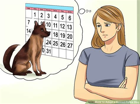 adopt a retired service 4 ways to adopt a retired wikihow
