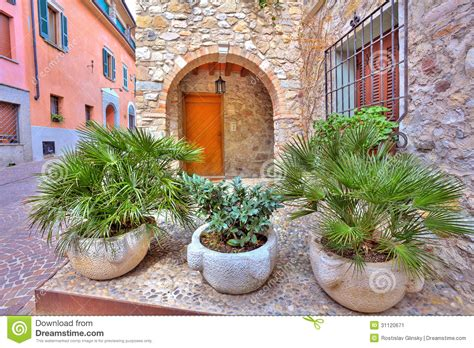 plants in house landscape surprising plants for front of house decor
