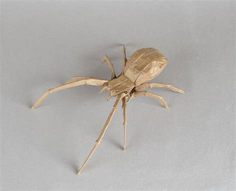 Spider Origami - brown widow spider robert lang by cahoonas on deviantart