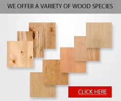 Kitchen Cabinet Skins by Unfinished Cabinet Doors Kitchen Cabinet Doors