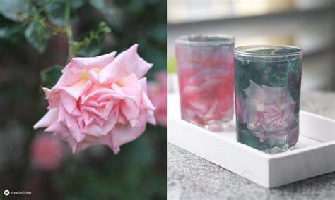 Teelichthalter Zum Einhängen In Gläser by Windlichter Aus Glas Einzigartig Exklusive Luxus