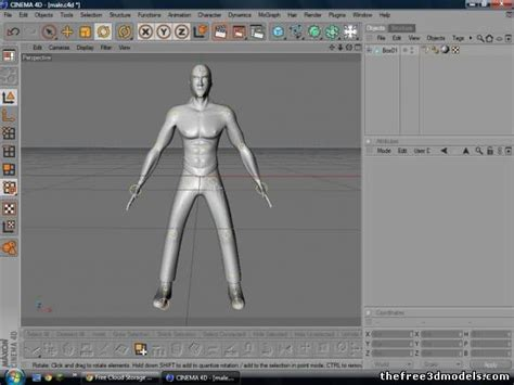 cinema 4d character template rigged character 3d model c4d fbx