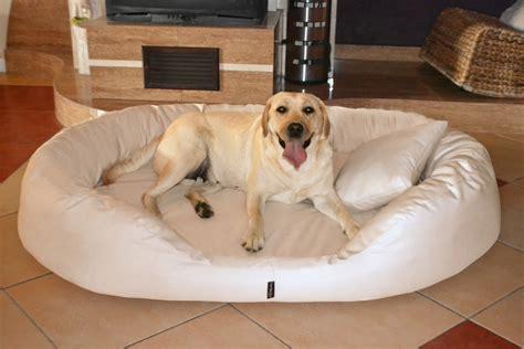 xxxl dog bed tierlando orthopedic dog bed sammy visco polyester 600d l