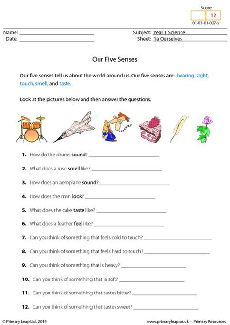 5 Senses Worksheets by Free Five Sense Organs Coloring Pages