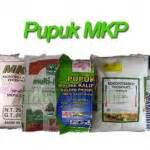 Mkp Pupuk Mono Kalium Phosphate kandungan hara dan manfaat pupuk mkp