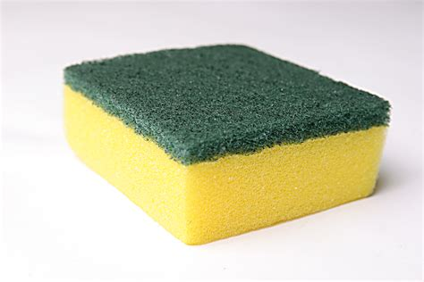 kitchen sponge gulf oil spill change by doing