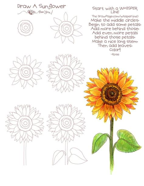 sunflower doodle god best 25 sunflowers ideas on sunflower crafts