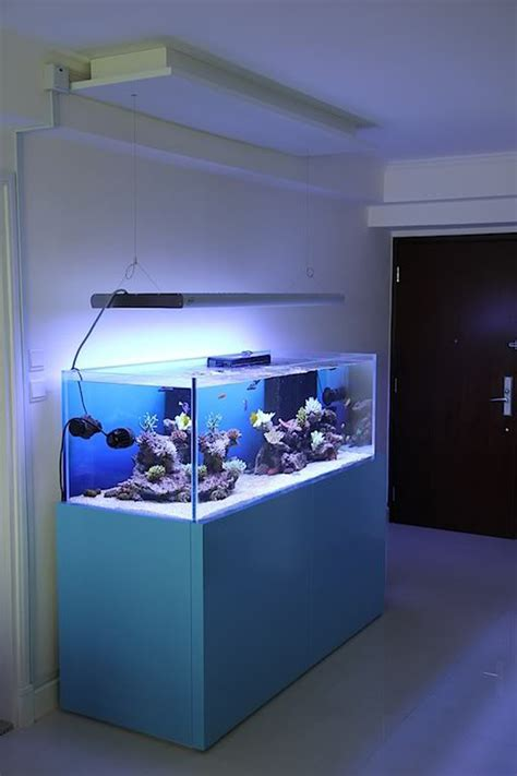 modern aquarium 20 modern aquariums for cool interior styles home design