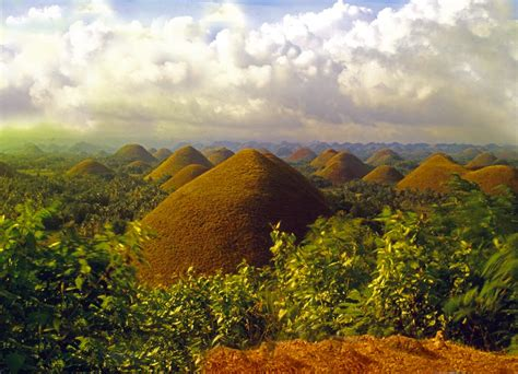 Buro L by Panoramio Photo Of Bohol Chocolate