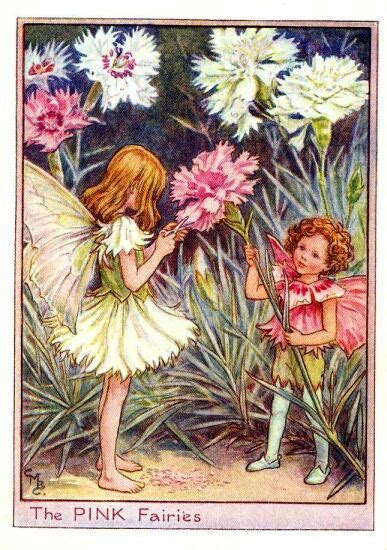 Flower Fairies Of The Garden The Pink Flower Vintage Print Cicely Barker The Flower Shop