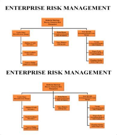 management organizational chart template risk management chart template 5 free sle exle