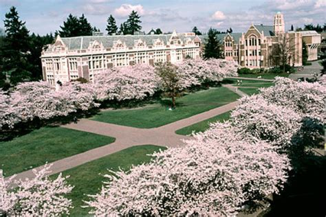 U Washington Mba Ranking by Top 25 Ranked Business And Economics Programs With The