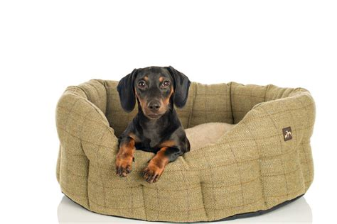 dachshund bed tweed dog bed by country and twee notonthehighstreet com