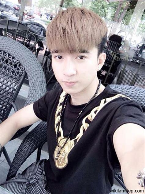 dan chi con ong vang related keywords con ong vang long tail