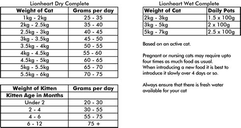 how much to feed a per day chart how much cat food per day uk food