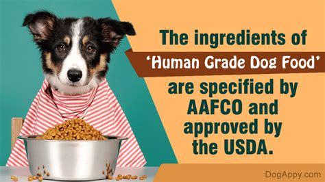 human grade food most popular brands that make the tastiest human grade foods