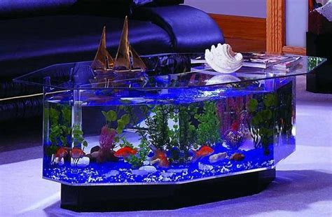 design vis aquarium 35 unusual aquariums and custom tropical fish tanks for