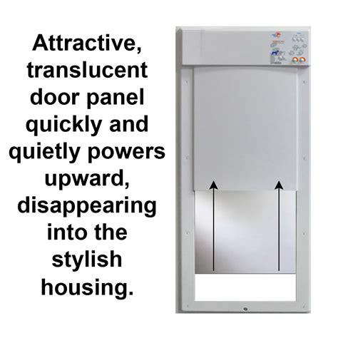 collar activated door power pet doors on sale here doors cat doors pet