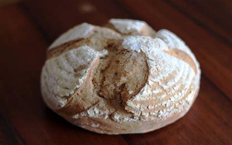pane di farro fatto in casa ricetta pane di farro agrodolce