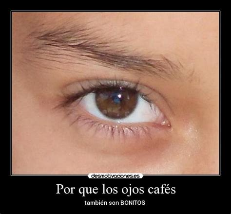 imagenes ojos lindos imagenes para facebook ojos bonitos hermosos car