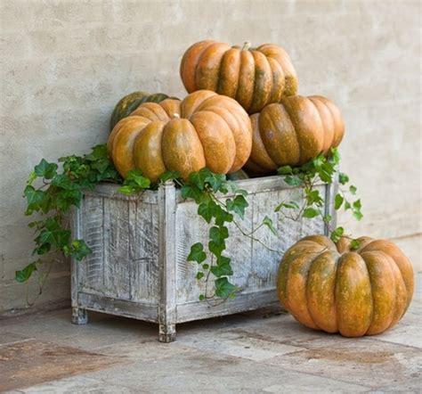 Simple Fall Decorating Ideas - pumpkin planter fall pinterest