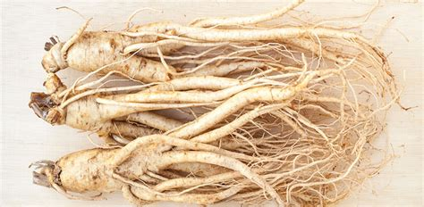 Ginseng Han han panax ginseng for cognitive brain health binghan