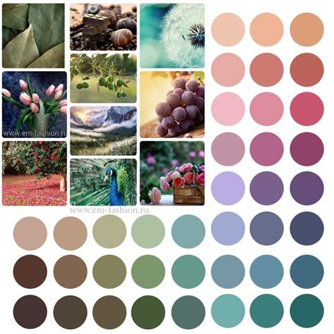 soft summer color palette the 25 best soft summer ideas on soft summer