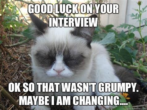 Good Luck Cat Meme - good luck cat meme memes