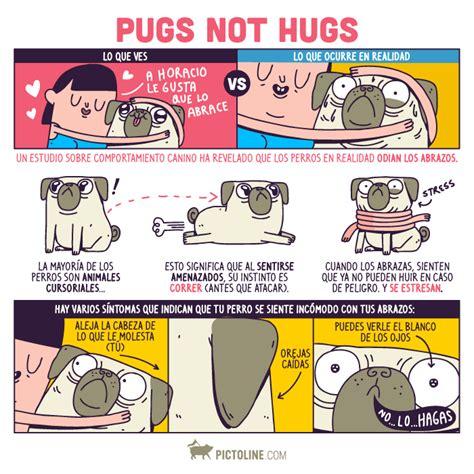 pugs not hugs 191 amas abrazar a tu perro pues tu perro no pictoline