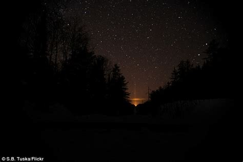 The Mystery Lights by Mystery Light In Michigan Forest Baffles Locals And Attracts Paranormal Enthusiasts Daily Mail